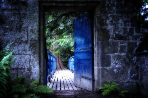 Old Door Input Door Open Gate Old Goal Shadow