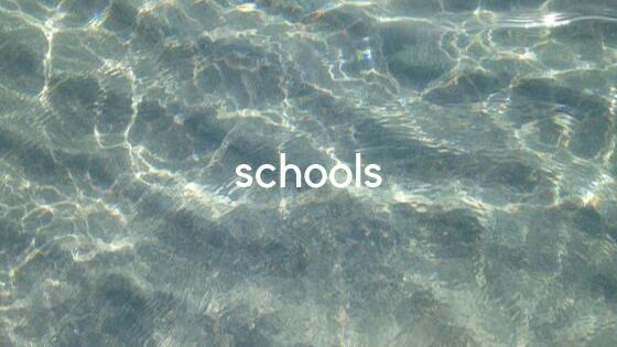 schools banner