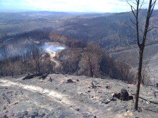 Bushfires 2020